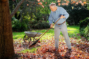 Get your lawn ready for fall